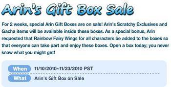 Arin's Gift Box Sale.jpg