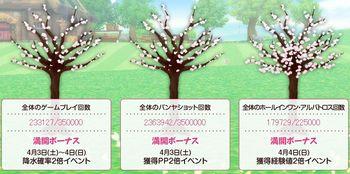 開花状況3.jpg