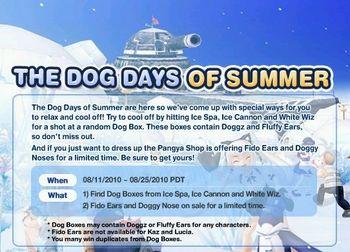 THE DOG DAYS OF SUMMER.jpg